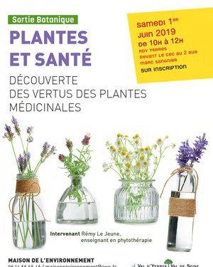 Découverte des vertus des plantes médicinales