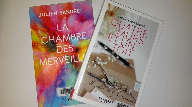 Café littéraire : Présentation des lectures de l'été