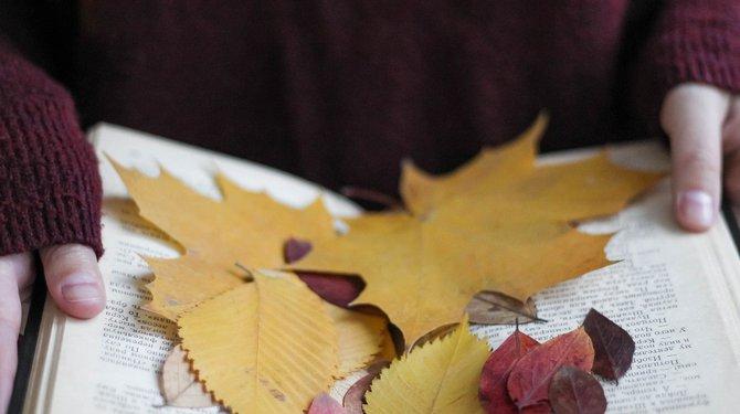 Marque-pages d'automne