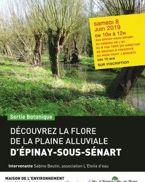 Découvrez la flore de la plaine alluviale d'Epinay-sous-Sénart