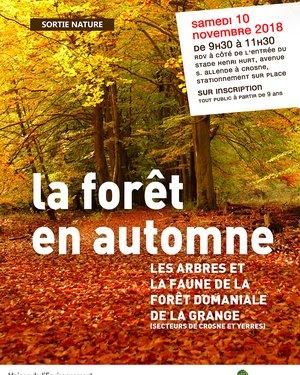 Sortie Nature : « La forêt en automne »