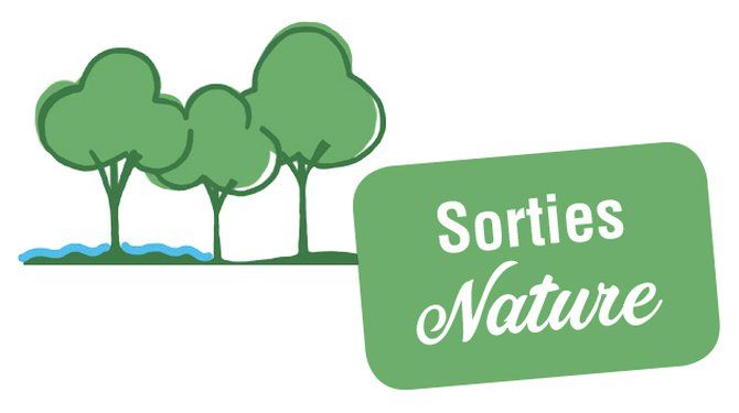 CHANTIER NATURE EN FORET DE SENART